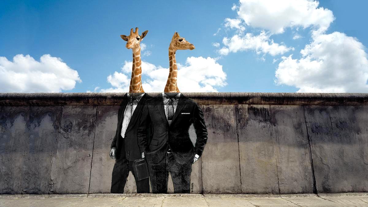 Pause Café chez Les Girafes